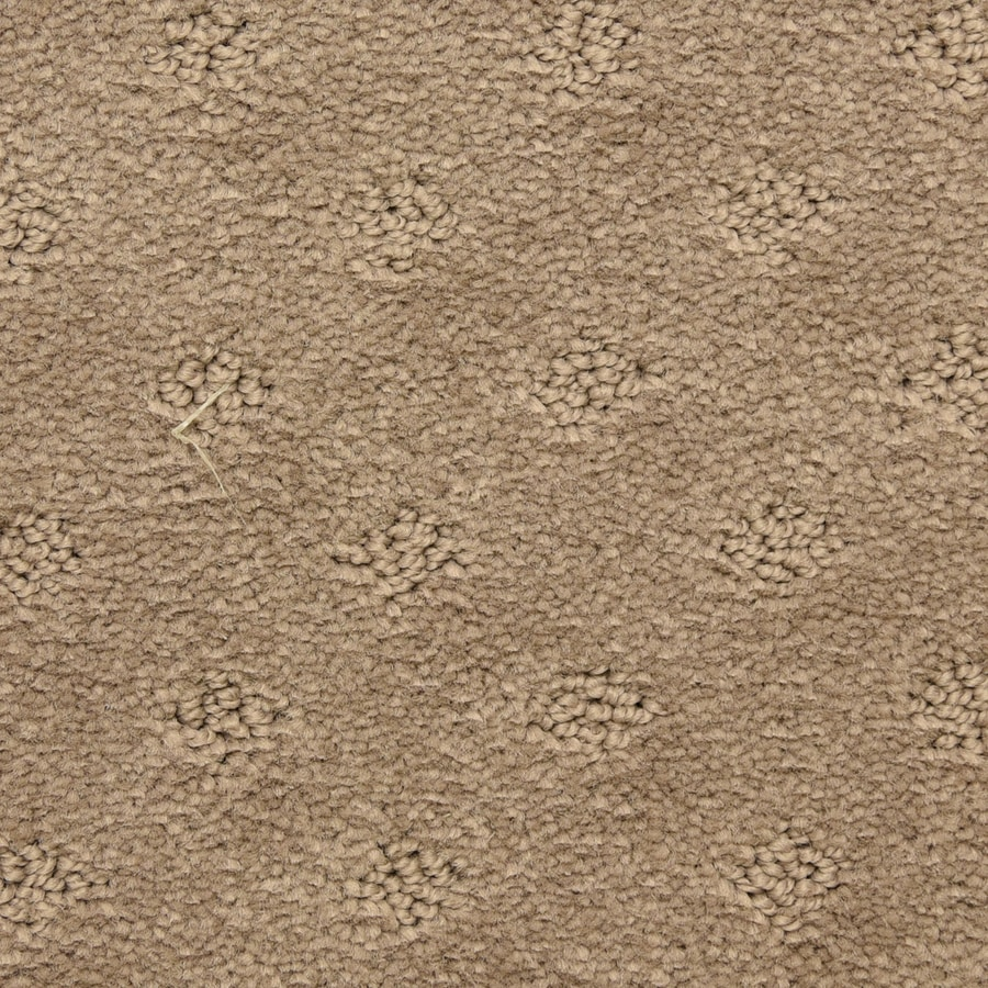 STAINMASTER LiveWell Symphonic 12-ft W x Cut-to-Length Potluck Pattern Interior Carpet