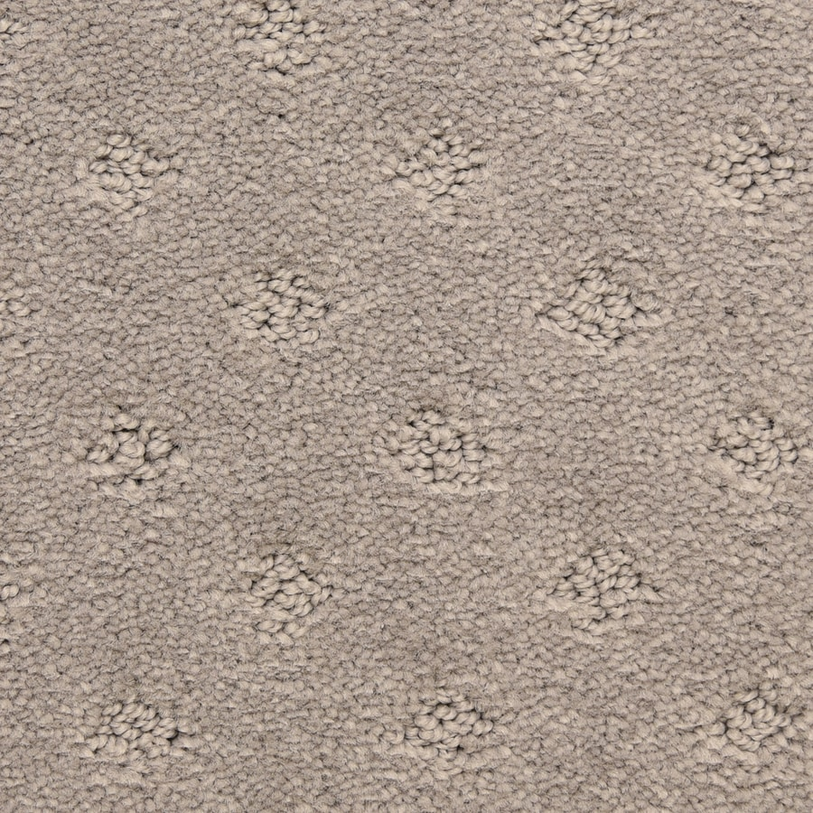 STAINMASTER LiveWell Symphonic 12-ft W x Cut-to-Length Ecilpse Pattern Interior Carpet