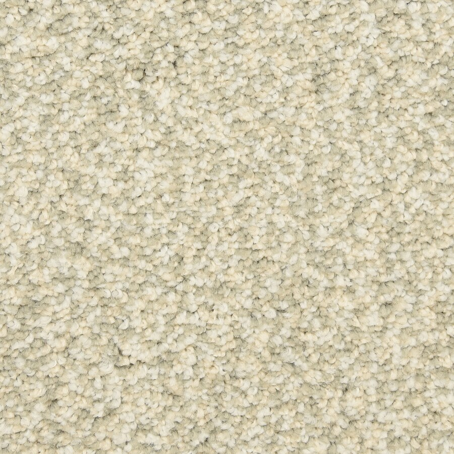 STAINMASTER LiveWell Festivity 12-ft W x Cut-to-Length Savannah Textured Interior Carpet