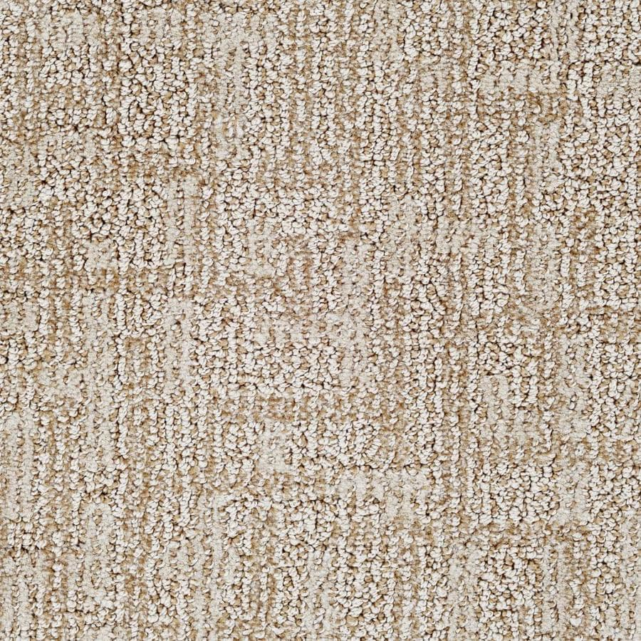 Dixie Group Active Family Galaxy 12-ft W x Cut-to-Length Atmosphere Pattern Interior Carpet