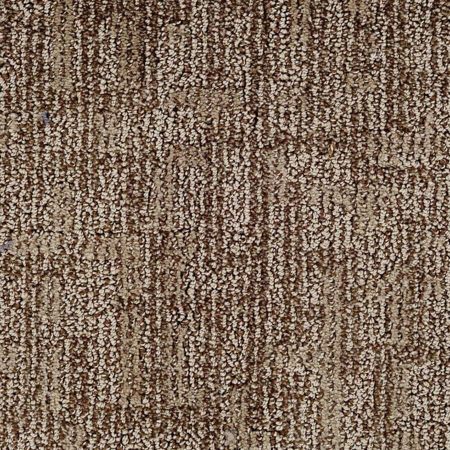 Dixie Group Active Family Galaxy 12-ft W x Cut-to-Length Surface Pattern Interior Carpet