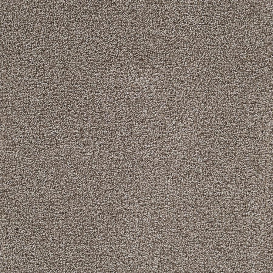 Stainmaster Livewell Music City 12 Ft Textured Interior