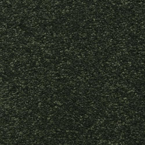 STAINMASTER LiveWell Privy Glowing Ember Textured Carpet ...