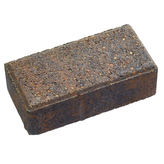 Holland Autumn Blend Concrete Paver Common 4 In X 8 In