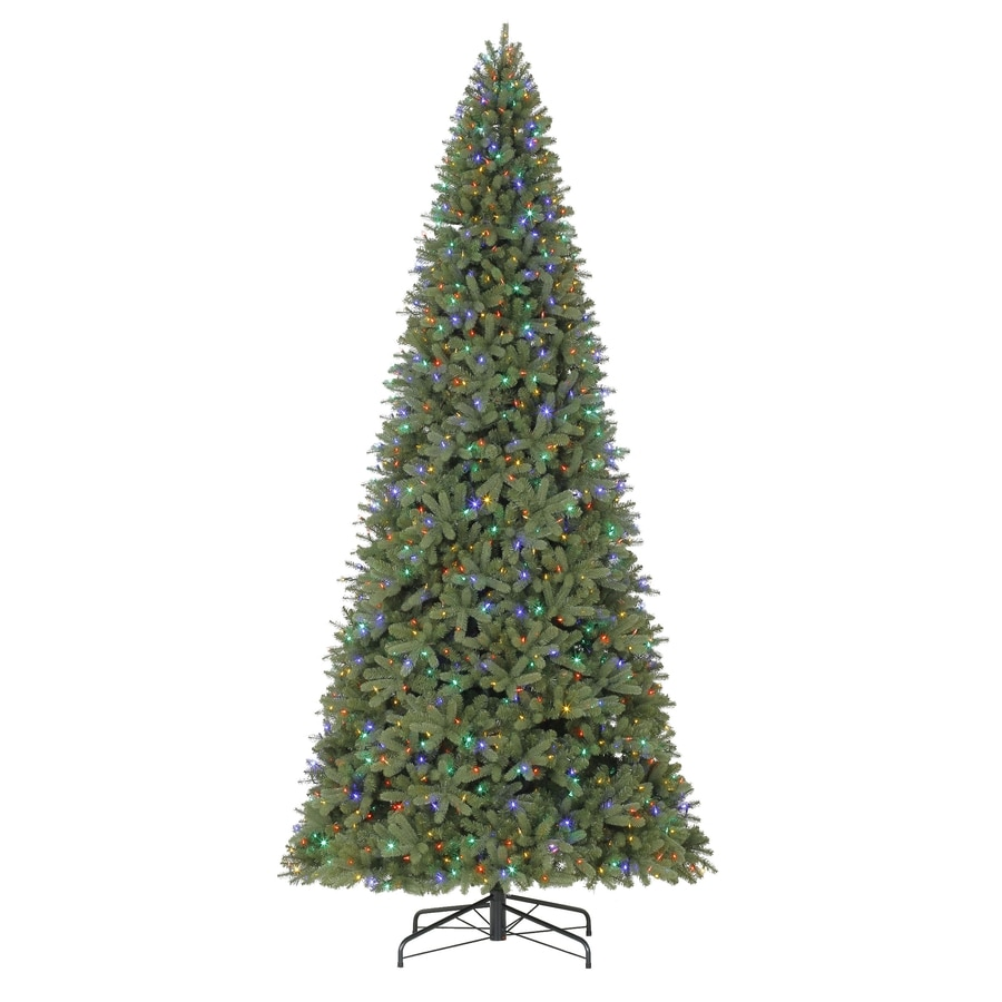 shop holiday living 12 ft pre lit douglas fir artificial