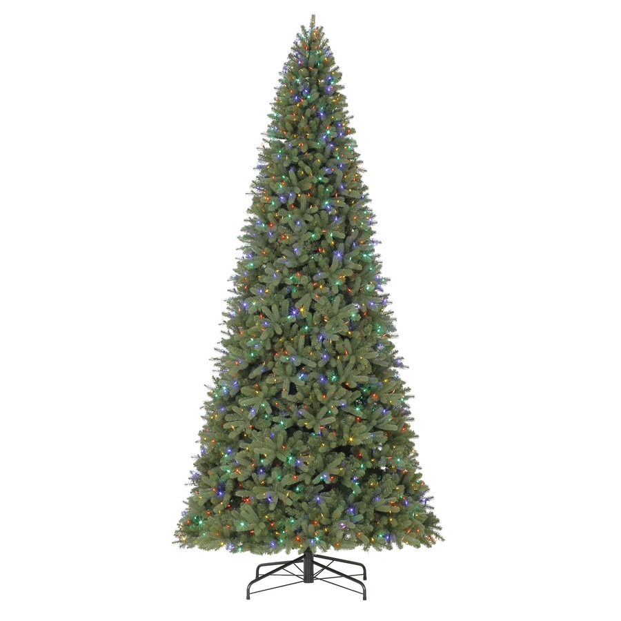 holiday living 12 ft pre lit douglas fir artificial christmas tree with 1350 color - Christmas Trees With Lights