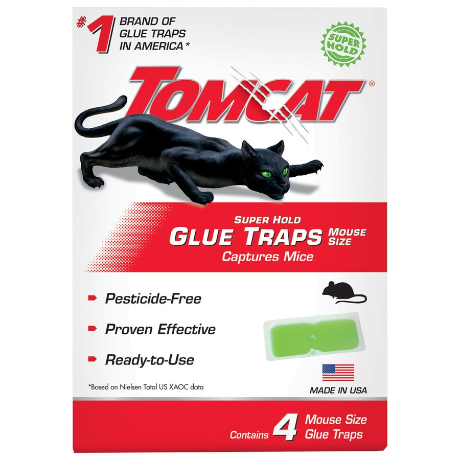 Electronic mouse trap diy sweepstakes