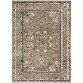 Safavieh 8 X 12 Rugs At Lowes