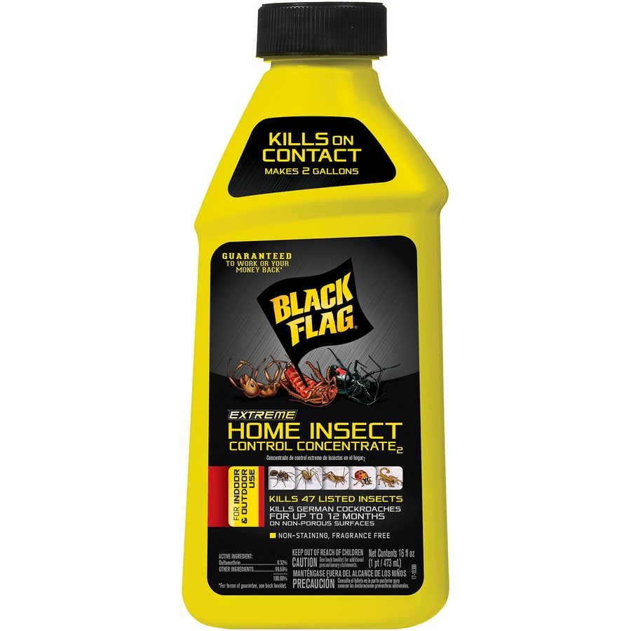 Black Flag Extreme 16 Fl Oz Insect Killer In The Pesticides Department At Lowes Com