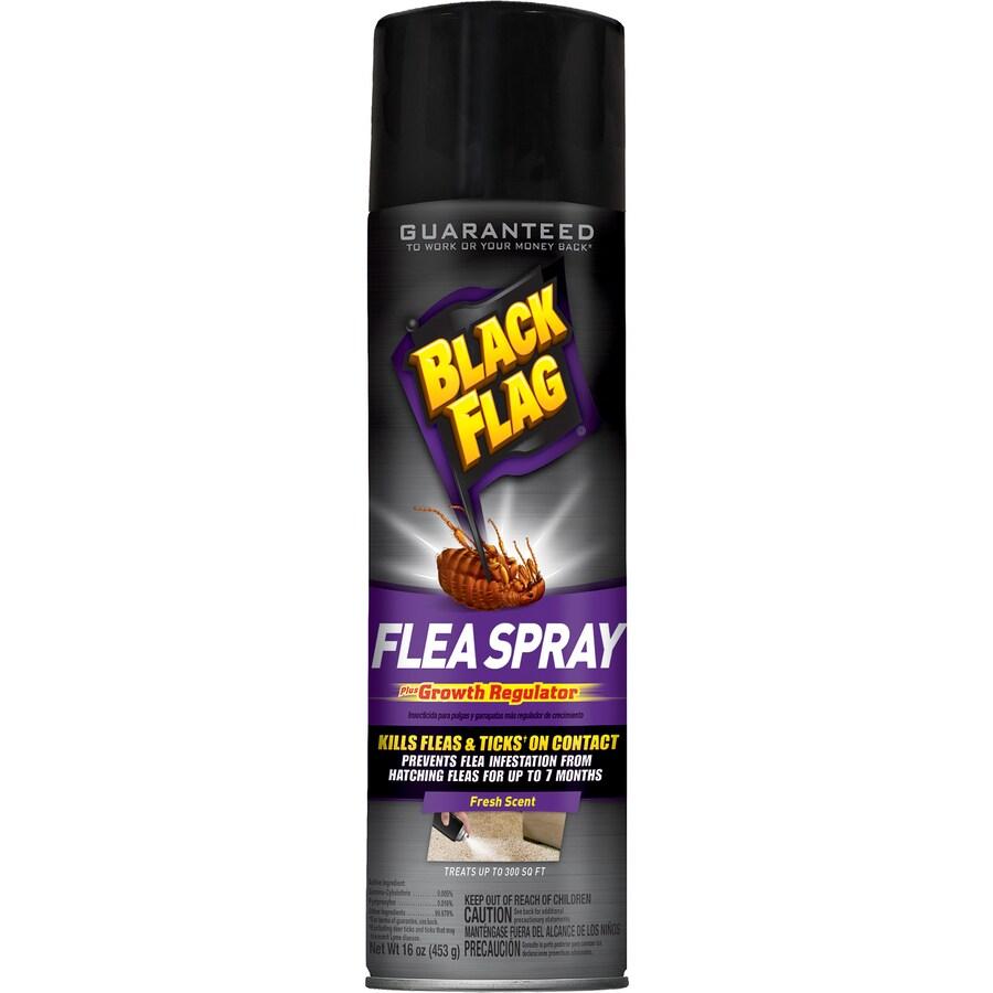 BLACK FLAG Flea Killer