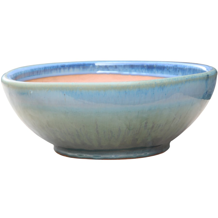 allen + roth 13-in x 5.7-in Blue/Green Ceramic Low Bowl Planter