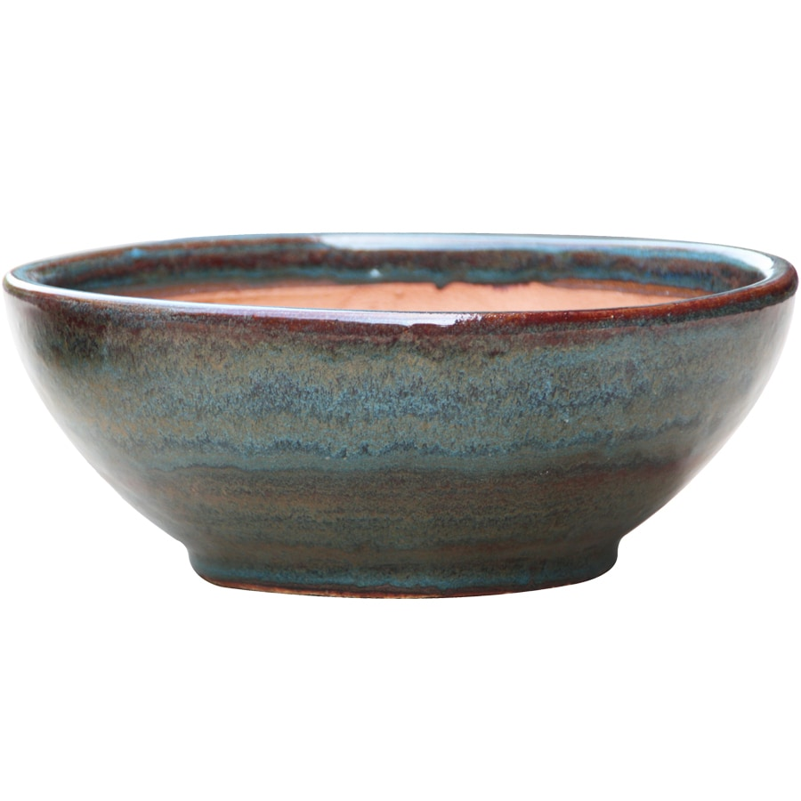 allen + roth 13-in x 5.7-in Blue/Gray Ceramic Low Bowl Planter
