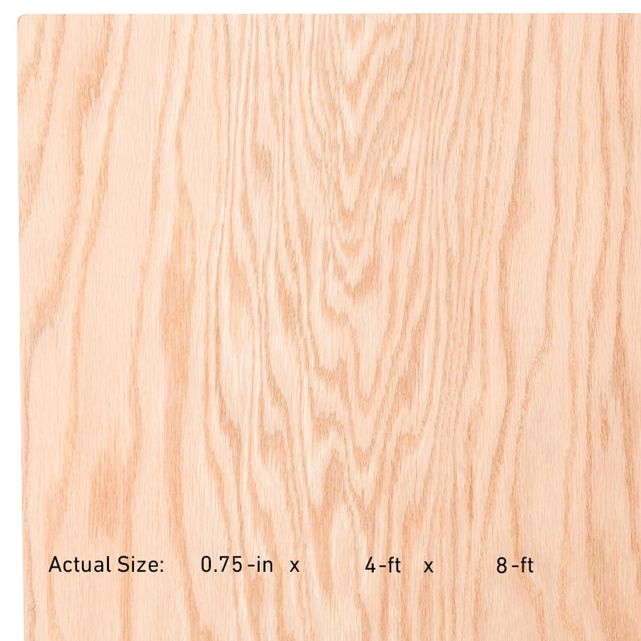 Top Choice 3 4 In Hpva Red Oak Plywood Application As 4 X 8 In The Plywood Department At Lowes Com