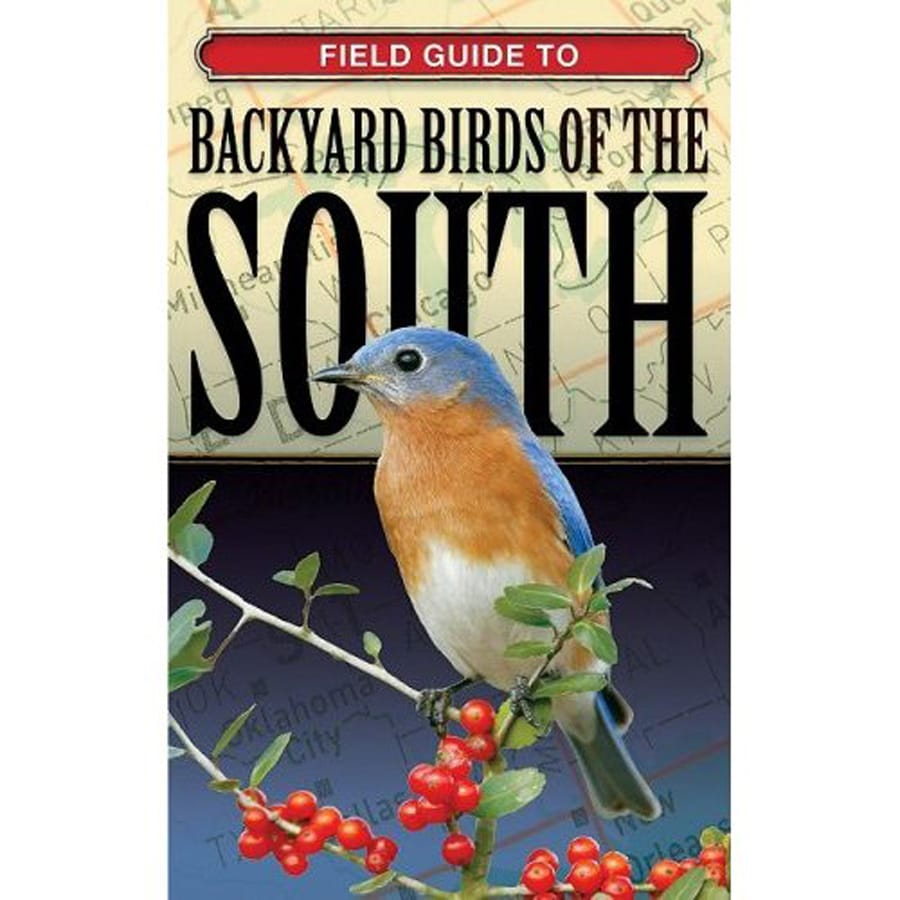 Backyard Birds Of The South