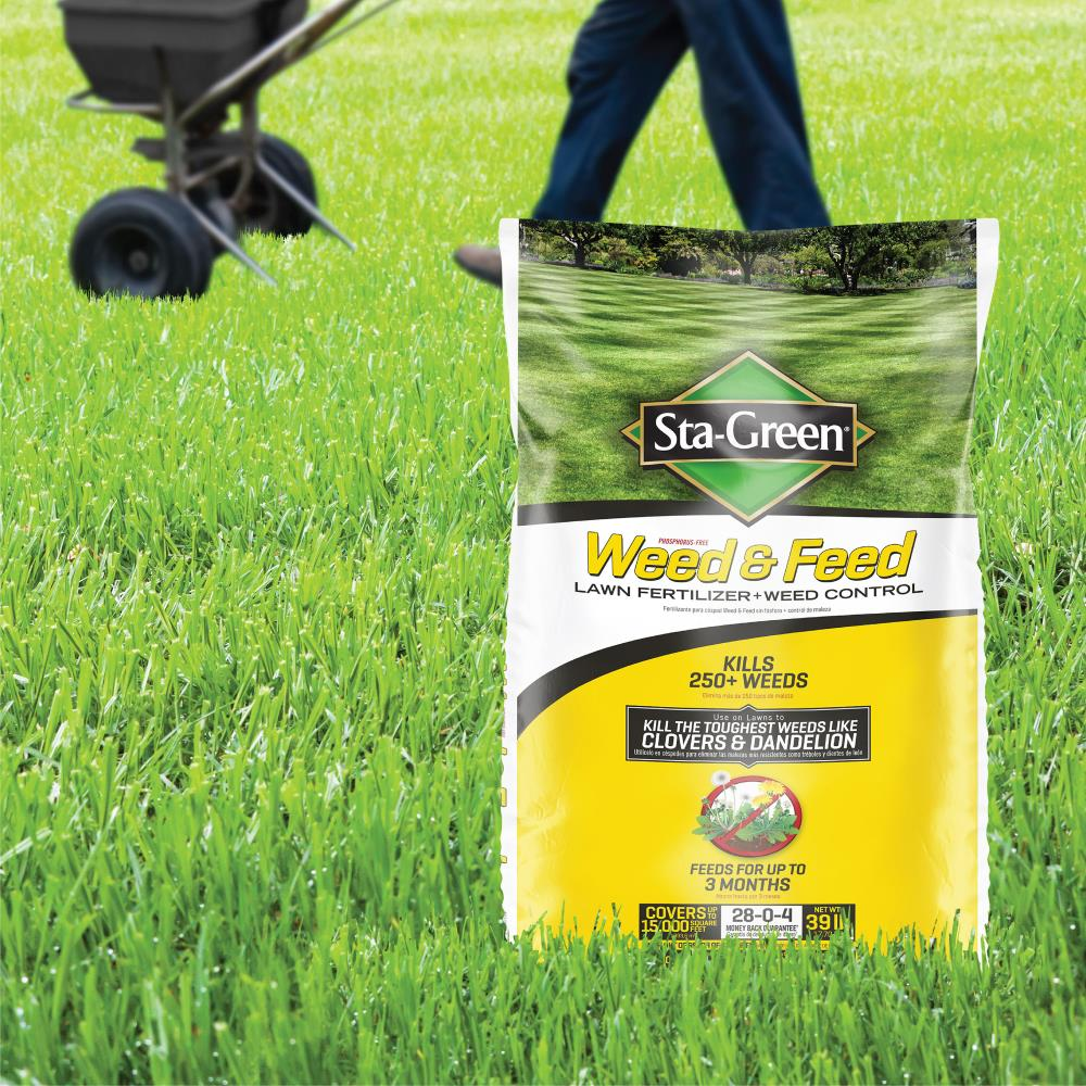 Sta Green Weed and Feed 10 lb 10 sq ft 10 10 All purpose Lawn Fertilizer
