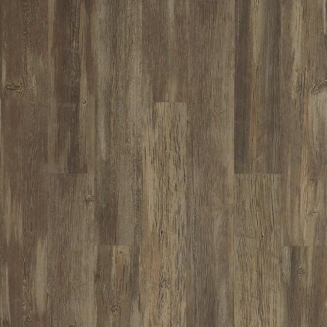Laminate Flooring Department At, Pergo Xp Coastal Pine Laminate Flooring